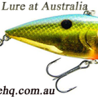 Buy Bass Fishing lure in Australia